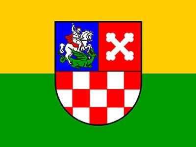 Romske udruge na području Bjelovarsko - bilogorske županije