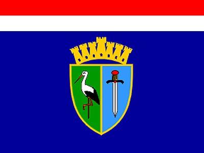 Romske udruge na području Sisačko - moslavačke županije