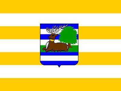 Romske udruge na području Vukovarsko - srijemske županije
